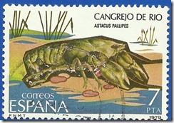 España - Fauna Invertebrados Cangrejo de Rio mullticolor1