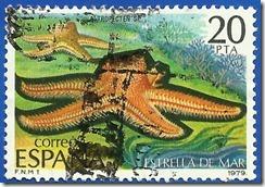 España - Fauna Invertebrados Estrella de Mar multicolor1
