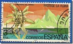 España - Protección da Natureza Edelweis do Pirineo Multicores1