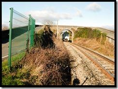 Puente-de-Vias-con-tren