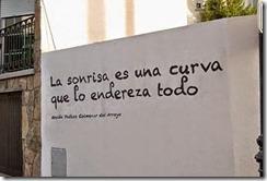 accion-poetica-colmenar-del-arroyo-comienza-c-T-IEX9Yg